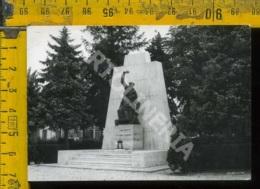 Rovigo Salara Monumento Ai Caduti (fotografia) - Rovigo