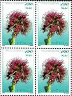 Albania Stamps 2016. FLORA. Flowers. Solenanthus Albanicus. Block Of Four 4. MNH - Albania