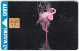 VENEZUELA A-247 Chip CanTV - Animal, Bird, Flamingo - Used - Venezuela