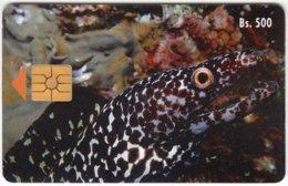 VENEZUELA A-358 Chip CanTV - Animal, Sea Life, Mooray - Used - Venezuela