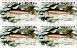 Albania Stamps 2018. Fauna: Fish. Salmo Trutta L. Block Of 4 MNH - Albania