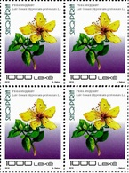 Albania Stamps 2018. Flora: St John's-wort. Block Of 4 MNH - Albania
