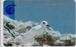#13 - ASCENSION-01 - BIRD - 1CASC - Ascension (Insel)