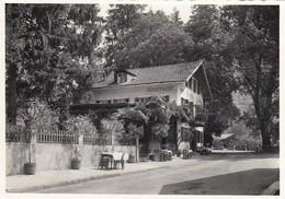 VAL PASSIRIA-MERANO-ALBERGO=QUELLENHOF=-CARTOLINA NON VIAGGIATA ANNO 1950-1959 - Merano