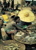 Afrique Marchandes De Poissons   CPM Ou CPSM - Cartes Postales