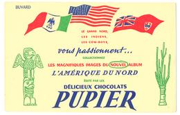 Buvard 21 X 13.6  Chocolat PUPIER  Album Amérique Du Nord Drapeau Etats Unis - Chocolat