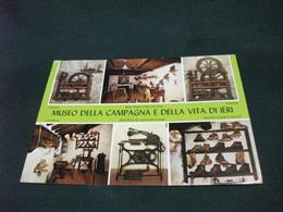 MUSEO  MUSEUM DELLA  CAMPAGNA E DELLA VITA DI IERI S. PELLEGRINO IN ALPE LUCCA - Musei