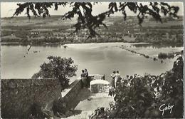 2037 Champtoceaux - Le Champalud - La Table D'orientation Et La Loire - Champtoceaux