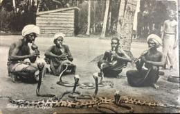 ASIA SRI LANKA SNAKE CHARMERS CEYLON. - Sri Lanka (Ceylon)