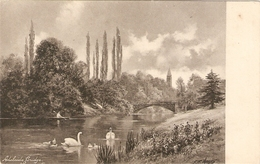 """River With Ducks. Adelaide Bridge"" Tuck Art Series PC # 1083 - Tuck, Raphael"