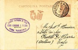 1929 VIBO VALENTIA CATANZARO DC + LEOLUCA CASTAGNA GENERI ALIMENTARI E COLONIALI - 1900-44 Victor Emmanuel III