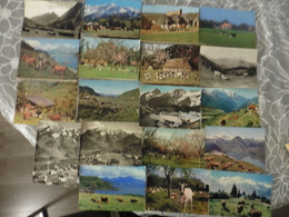 LOT   DE 78     CARTES  POSTALES    DE   VACHES - 5 - 99 Cartes
