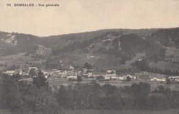 CPA - Semsales - Vue Générale - FR Fribourg