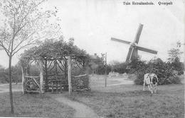 Overpelt (molen) - Overpelt