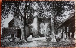 CARTE DOMBLANS - 39 - LE CHATEAU - N°12 - SCAN RECTO/VERSO - 4 - Autres Communes