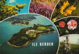 D 56 - ILE BERDER - Multi-vues - Fleurs - Ed. Pierre ARTAUD - CPM - Autres Communes