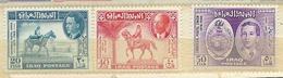 Union Postale Universelle (U.P.U.):  TP D'Irak, Neufs** - UPU (Wereldpostunie)