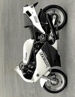 Ducati 750 +-18cm*23cm Moto MOTOCROSS MOTORCYCLE Douglas J Jackson Archive Of Motorcycles - Photographs