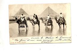 Carte Le Caire Pyramide Chameau  Cachet Maritime   Timbre Oté - Le Caire