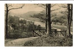 CPA Carte Postale-Belgique-Dave- Pont Rustique Au Vieux Château-1914- VM12805 - Namen