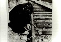 Photographie D'un Homme Près D'une Voie Ferrée En Train De... Réparer !! - Personnes