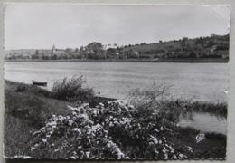 Villefranche-sur-Saône (Rhône), Les Rives De La Saône Au Printemps - Villefranche-sur-Saone