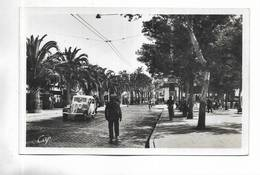 66 - PERPIGNAN - Place Arago Et Le Palmarium. Voiture Ancienne - Perpignan