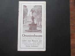 Deutsches Reich 1934 Faltprospekt Oranienbaum Mit Reklame U.a. Vekehrs Lokal Der NSDAP - Folletos Turísticos