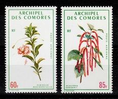 Comores - YV PA 37 & 38 N** Fleurs Cote 13 Euros - Comores (1950-1975)