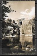 SAUVETERRE - DE - BEARN   -   Le Pont De La Légende.   PHOTO  Véritable. - Sauveterre De Bearn