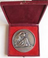 Médaille En Aluminium Produits Chimiques Electrométallurgiques Alais Camargue Froges Attribué à Mme GALLIOZ M. 1946 - Autres