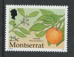MONTSERRAT 2001 Definitives/Fruit/Orange 25c: Single Stamp UM/MNH - Montserrat