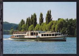 """MS """"Stein Am Rhein"""" - Steamers"""