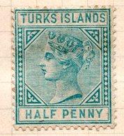 AMERIQUE CENTRALE - TURKS Et CAIQUES - (Colonie Britannique) - 1882-94 - N° 21 - 1/2 P. Vert - (Victoria) - Turks And Caicos
