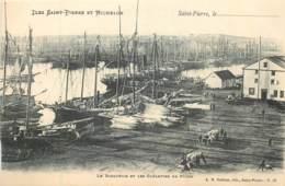 France - Saint-Pierre Et Miquelon - St.-Pierre - Le Barachois Et Les Goélettes De Pêche - Saint-Pierre-et-Miquelon