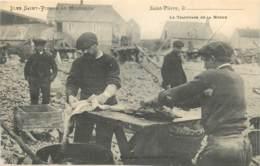France - Saint-Pierre Et Miquelon - St.-Pierre - Le Tranchage De La Morue - Saint-Pierre-et-Miquelon