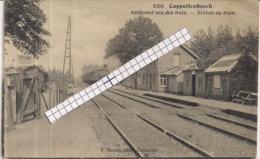 """CAPPELLENBOSCH-KAPELLEN""""AANKOMST VAN DE TREIN-STATIONSZICHT-ARRIVEE DU TRAIN""""HOELEN8309 UITGIFTE 1920 TYPE6 - Kapellen"""