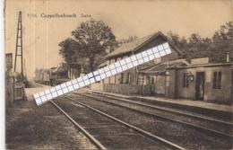 """CAPPELLENBOSCH-KAPELLEN""""DE STATIE MET AANRIJDENDE STOOMTREIN""""HOELEN 9306 UITGIFTE 1925 TYPE 9 - Kapellen"""