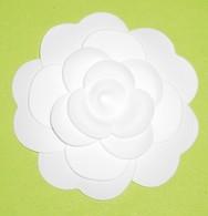 CHANEL -CAMELIA - Cartoline Profumate
