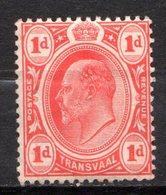 TRANSVAAL - (Administration Britannique) - 1906-09 - N° 178 - 1 P. Rouge - (Edouard VII) - Südafrika (...-1961)