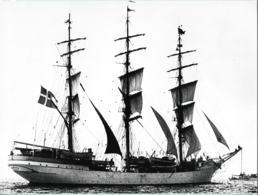 Press Photo: Windjammerparade With The Danish Ship Danmark. Size: 17,5 X 24 Cm (LAR9-21) - Photographs