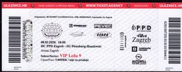 Croatia Zagreb 2020 / Arena / Handball / PPD Zagreb - SG Flensburg - Handewitt / Ticket - Tickets & Toegangskaarten