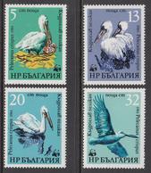 1984 Bulgaria WWF Pelicans Birds Complete Set Of 4  MNH - Nuevos