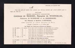 WESTERLOO WESTERLO Princesse Et Duchesse D'ARENBERG Comtesse De MERODE 1905 Avis Mortuaire A5 - Décès