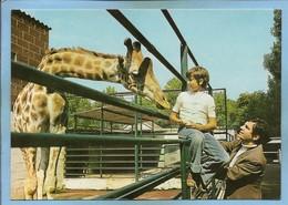 "Ermenonville (60) Zoo Jean-Richard Jean-Pierre Richard Présente La Girafe ""Lili"" à Roger Pierre 2scans 15-07-1979 - Ermenonville"