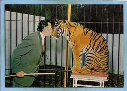 Ermenonville (60) Zoo Jean-Richard Zorra Tigresse Favorite D. Darbois 2scans 15-07-1979 Bisou - Ermenonville