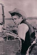 James Dean Acteur Américain (3454) 10x15 - Entertainers