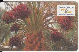 MAURITANIA - Mauritel Prepaid Card 1000 UM(matt Surface), Used - Mauritania