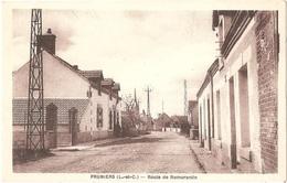Dépt 41 - PRUNIERS-EN-SOLOGNE - Route De Romorantin - (Édit. N. Gourault) - Sonstige Gemeinden