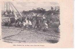 COTE D IVOIRE(TYPE) BILLE D ACAJOU - Côte-d'Ivoire